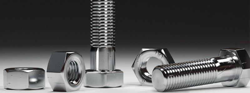 Stainless Steel 310 310S Fastener Manufacturer
